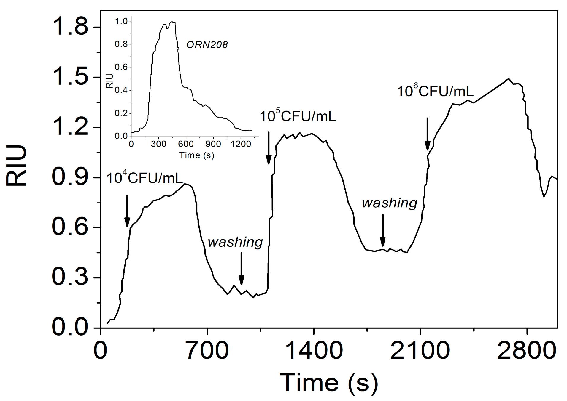 Sensors free full text supramolecular recognition of escherichia no ccuart Images
