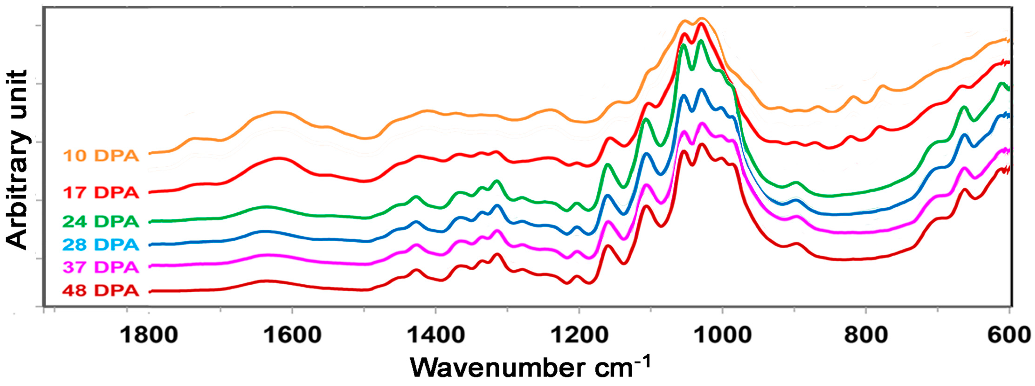 transform infrared spectroscopy essay Fourier transform infrared spectroscopy (ftir spectroscopy) covers a wide range of chemical applications, especially for polymers and organic compounds learn more about the basics of this.