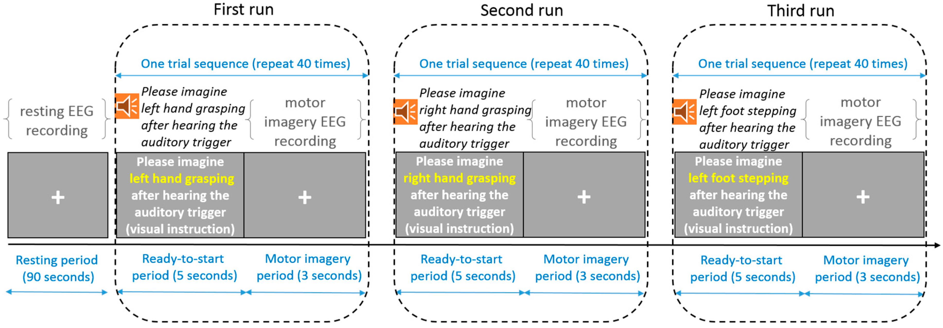 Sensors   Free Full-Text   Motor Imagery EEG Classification