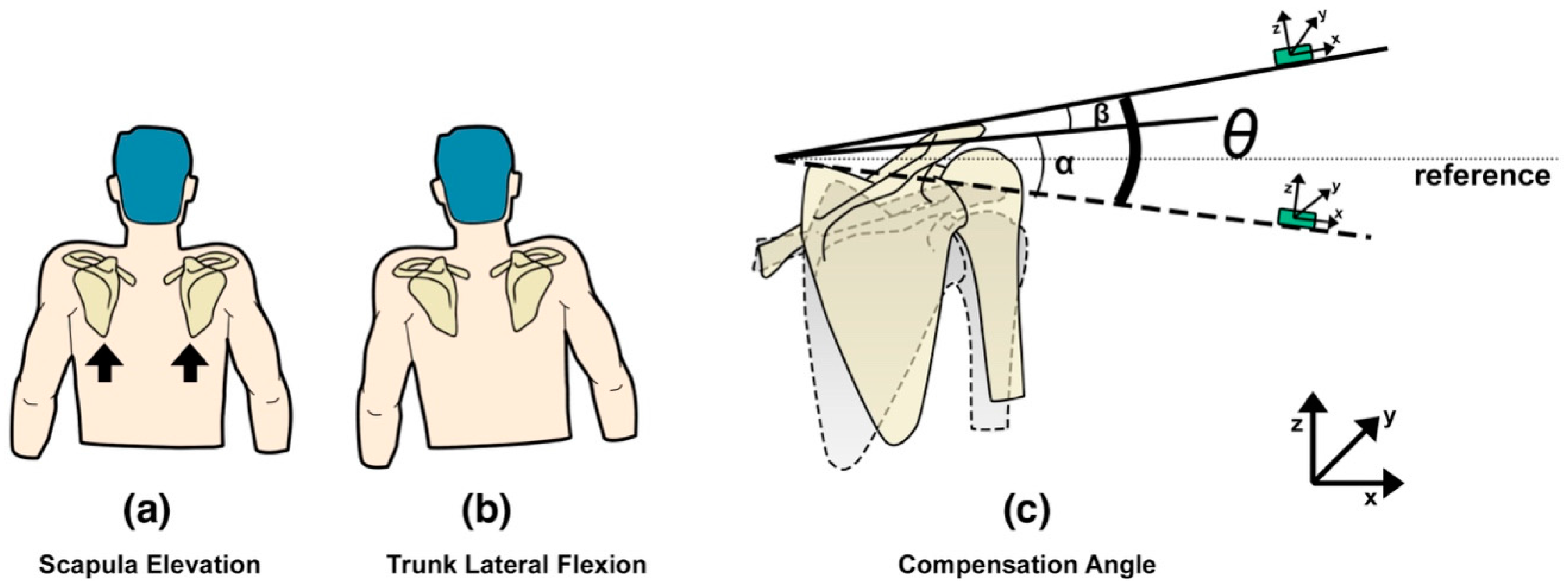 Sensors | Free Full-Text | Motor Control Training for the Shoulder ...