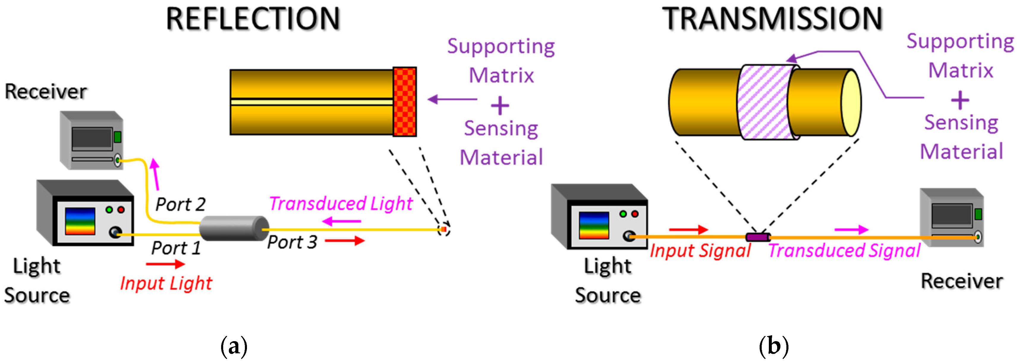 signal light wiring diagram 1999 bui    wiring diagram