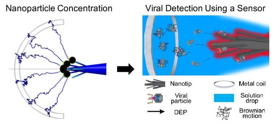 photonic crystal detection Nanostructured surfaces and detection instrumentation for photonic crystal enhanced detection in the context of molecular diagnosis and gene expression.