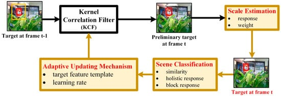 Sensors | Special Issue : Video Analysis and Tracking Using State-of