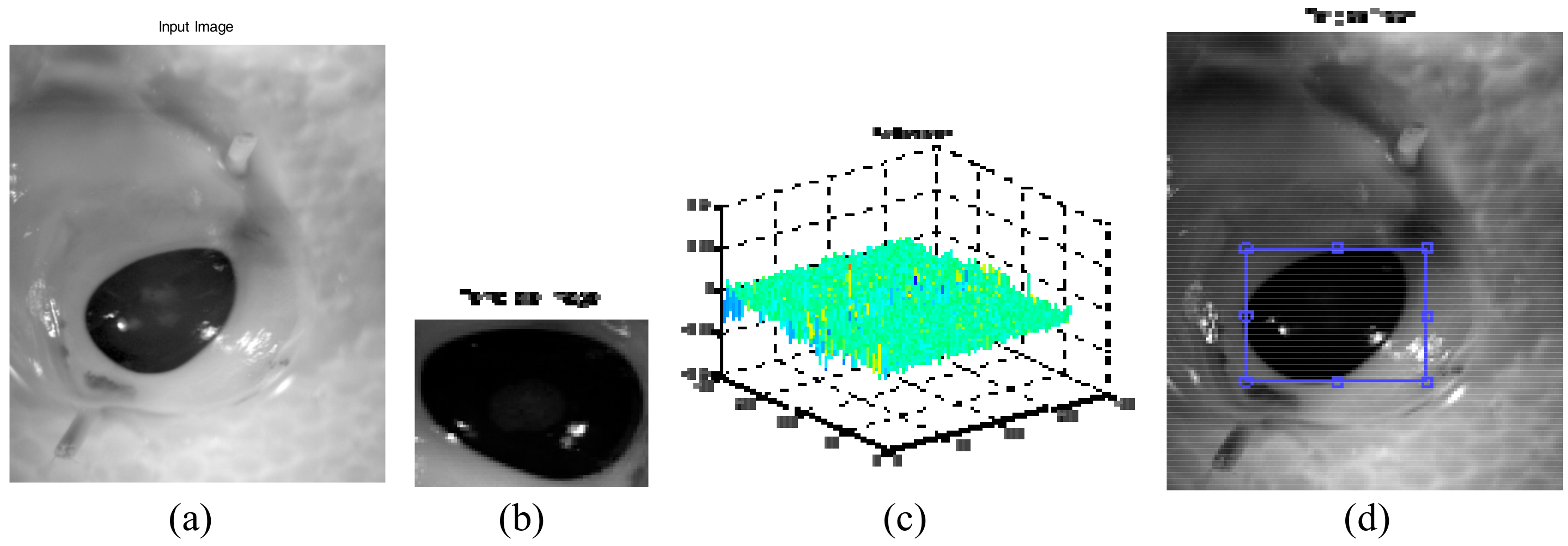 Sensors | Free Full-Text | Hyperspectral Image Enhancement and