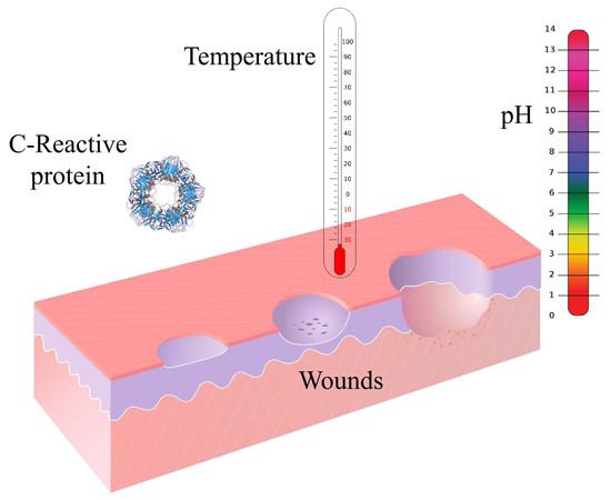 C Reactive Protein Range Labcorp   CINEMAS 93