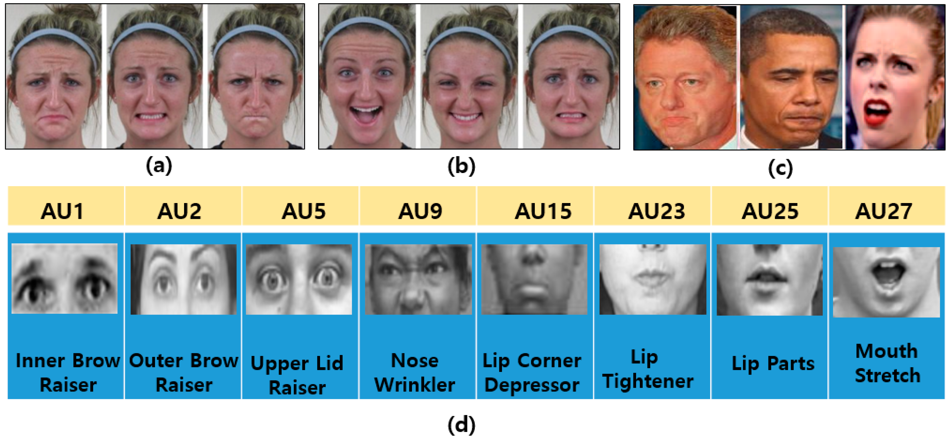 Sensors | Free Full-Text | A Brief Review of Facial Emotion