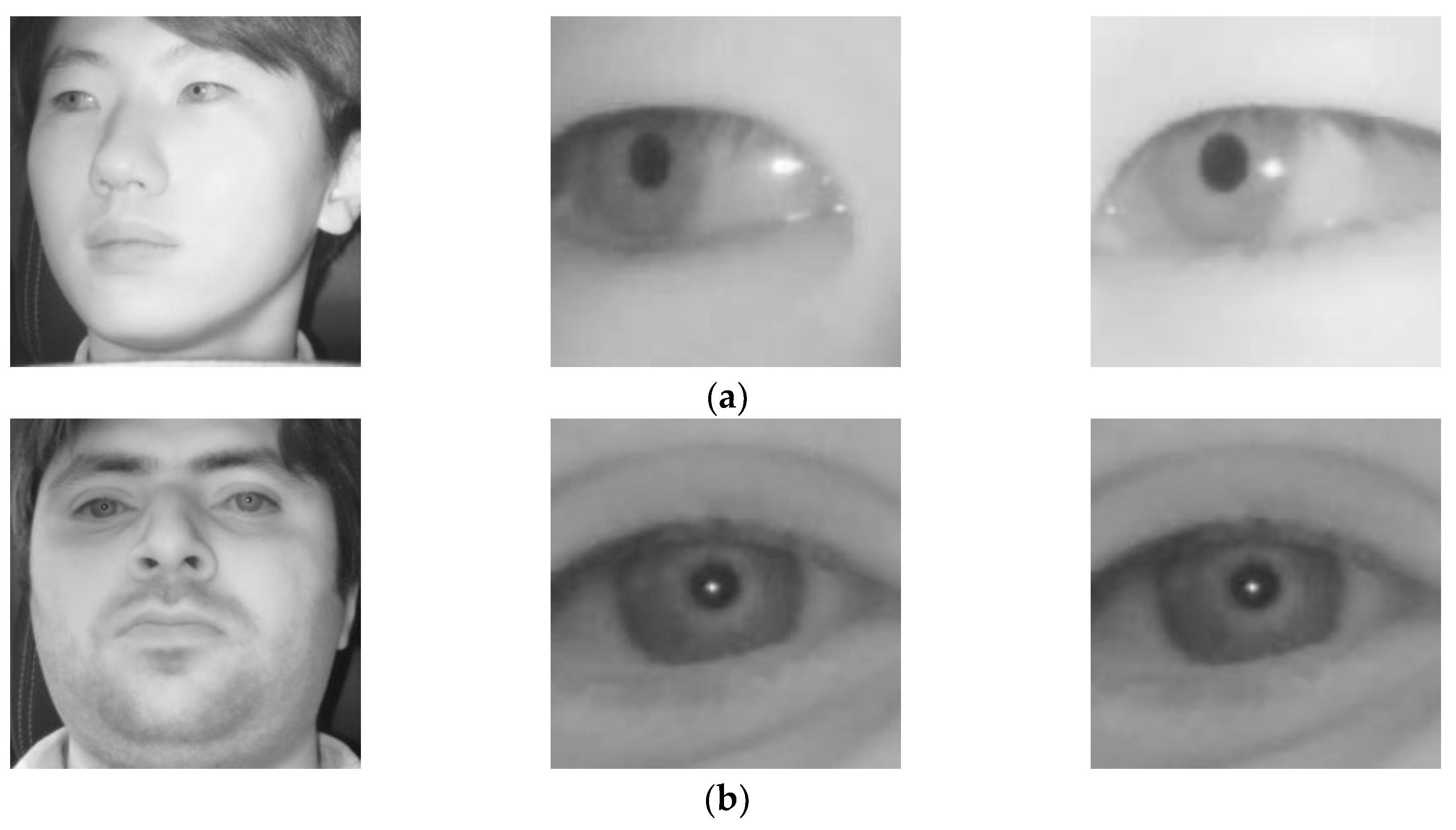 Sensors | Free Full-Text | Deep Learning-Based Gaze
