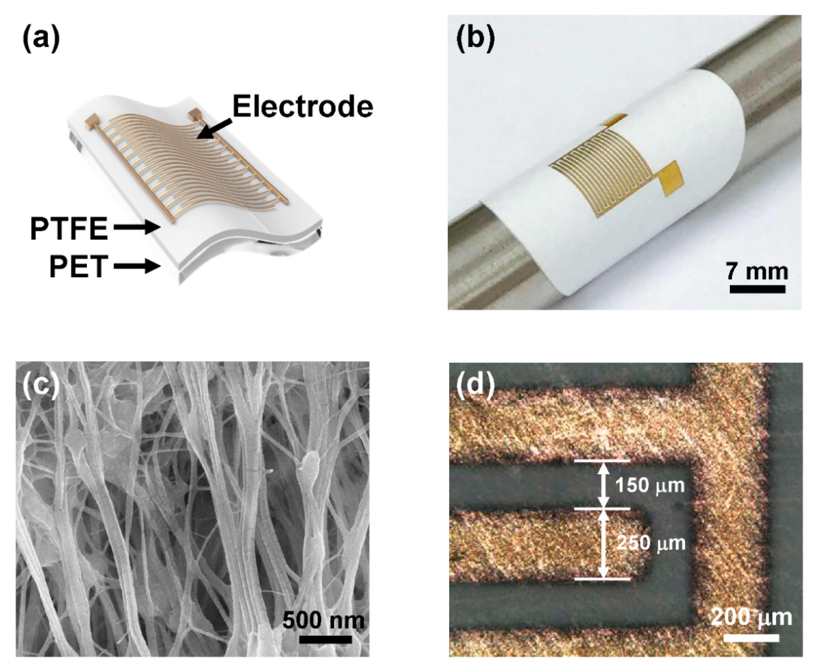 Sensors | Free Full-Text | Enhanced Moisture-Reactive  Hydrophilic-PTFE-Based Flexible Humidity Sensor for Real-Time Monitoring |  HTML