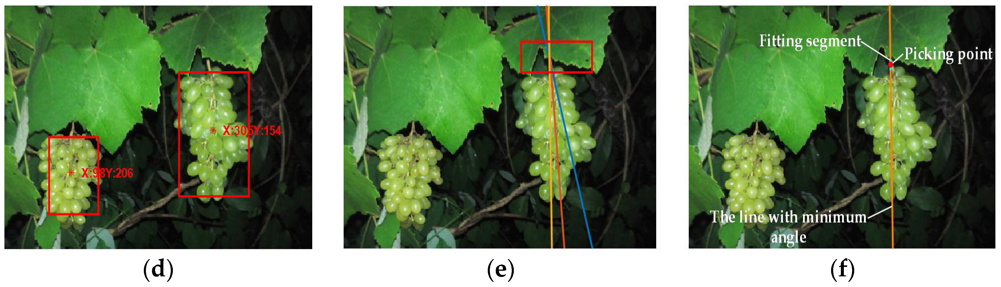 Sensors Free Full Text Green Grape Detection And