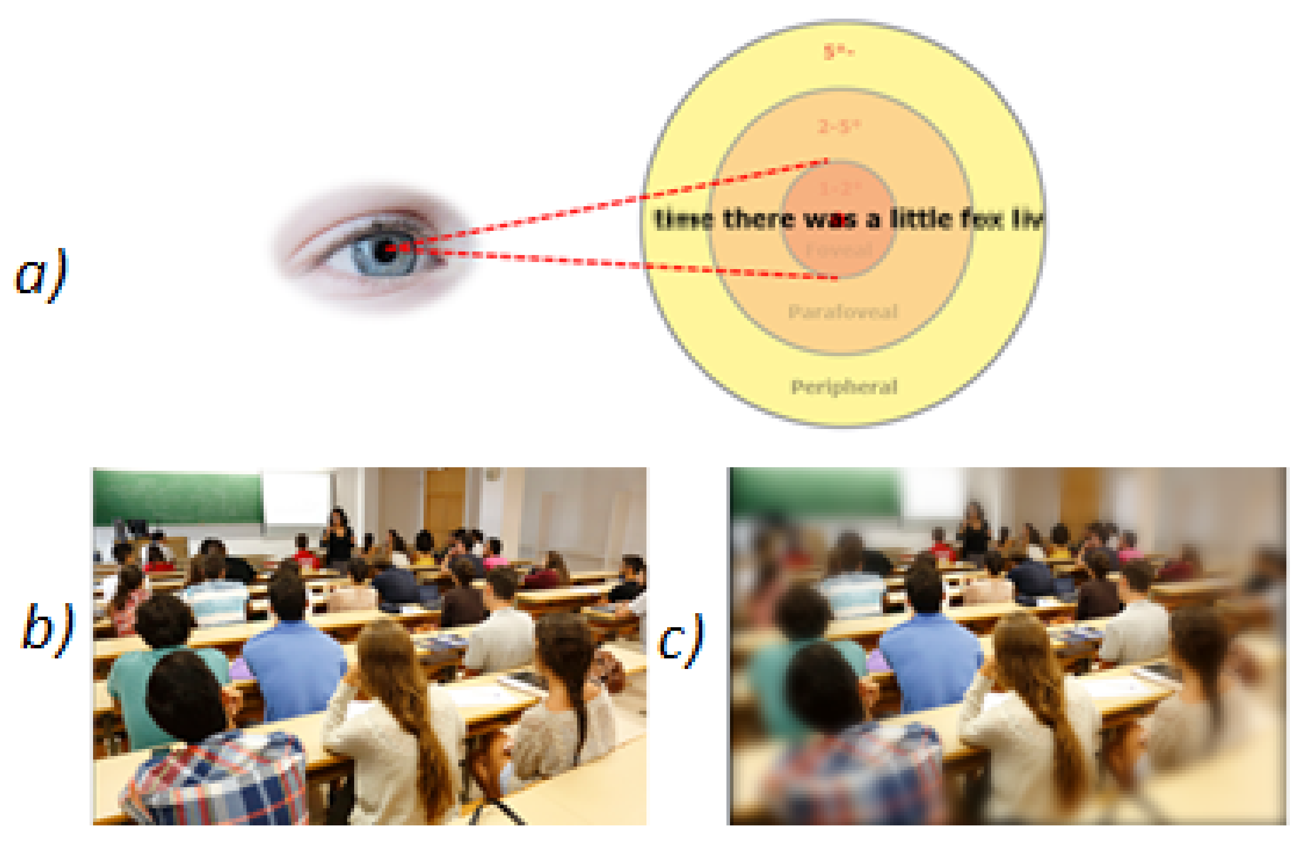 Sensors | Free Full-Text | Correction of Visual Perception Based on