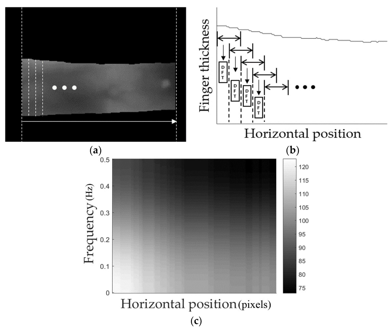 Sensors | Free Full-Text | Multimodal Biometric Recognition