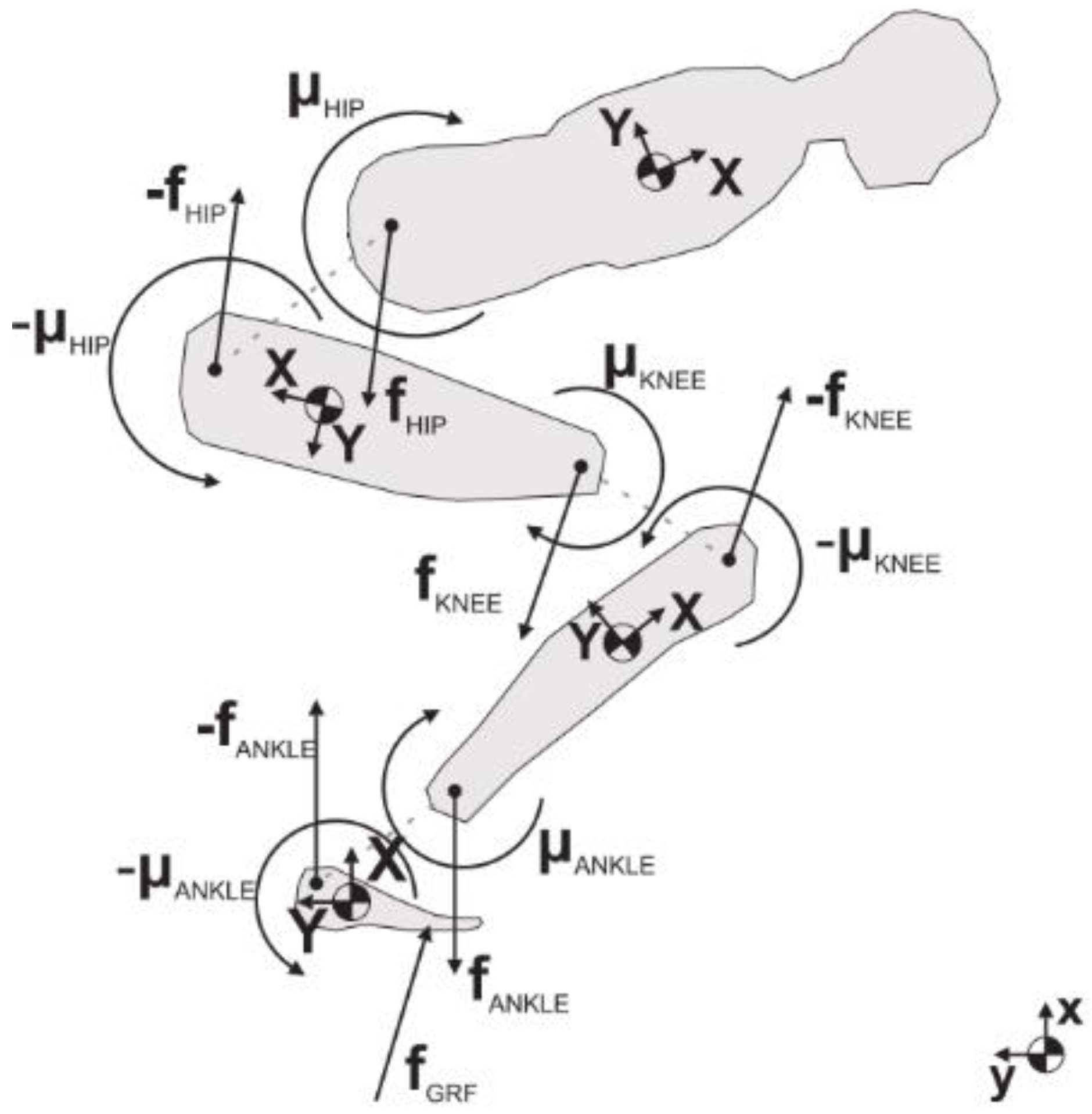 Free Body Diagram Showing The Applied Force Is Only Partially