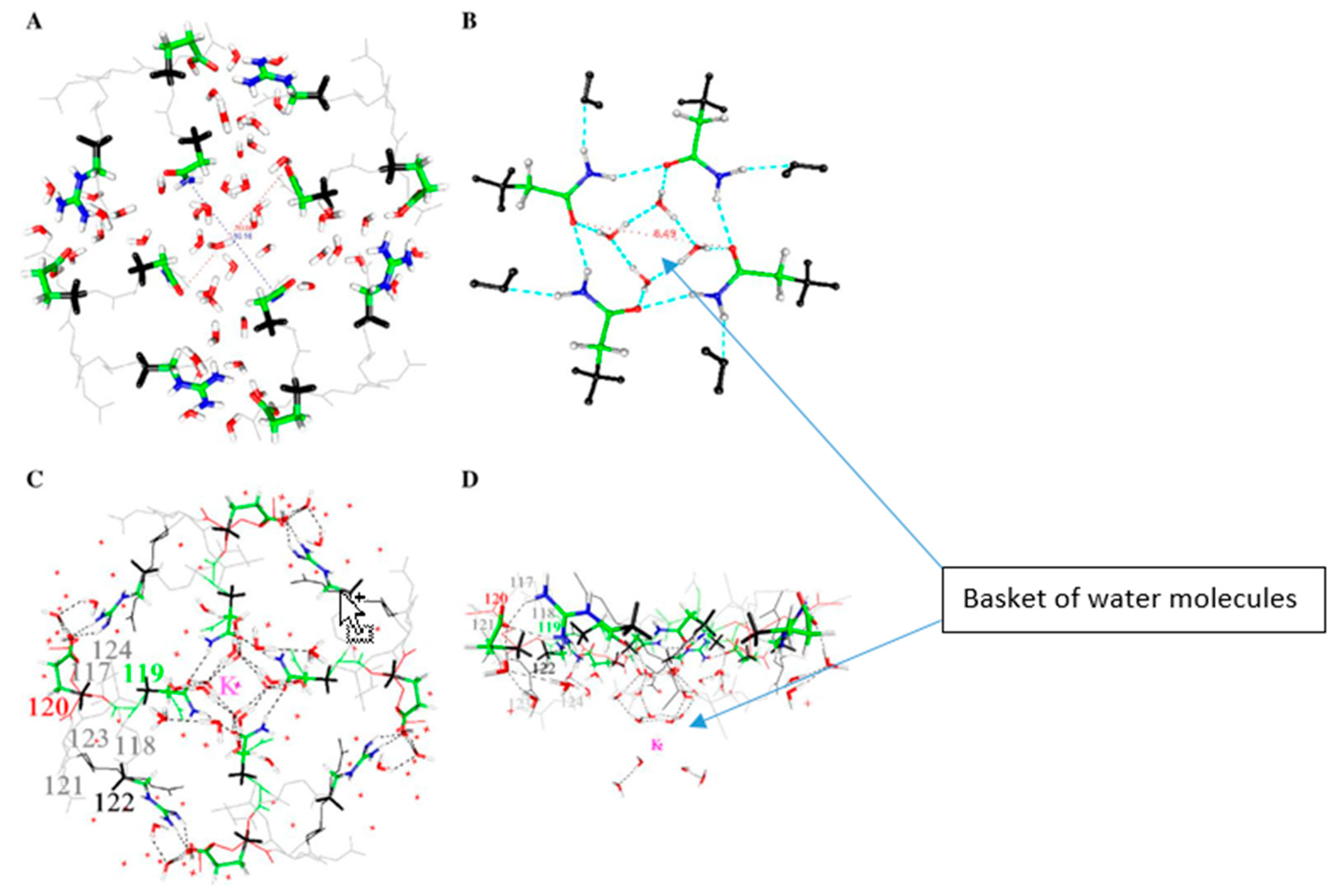 Sensors | Free Full-Text | The Role of Proton Transport in