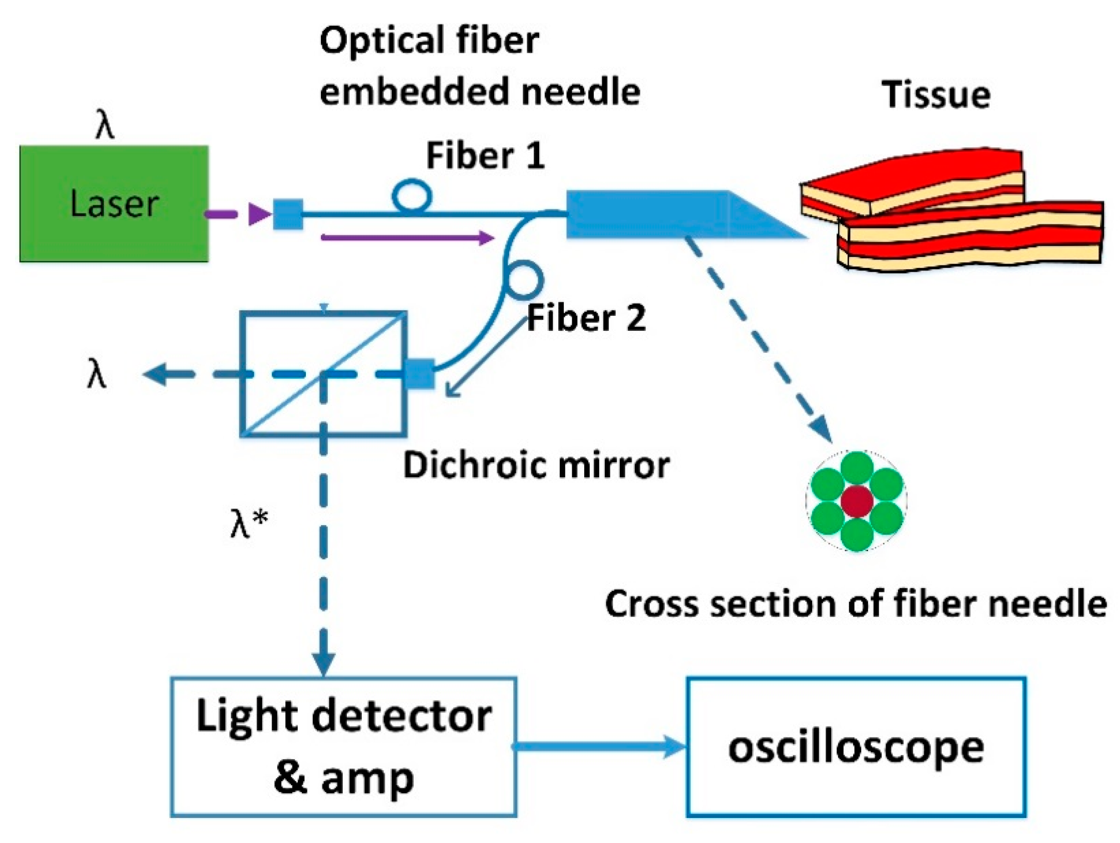 Sensors Free Full Text Double Assurance Of Epidural Space Fiber Optics Diagram Optic Technology And Its Role In The No