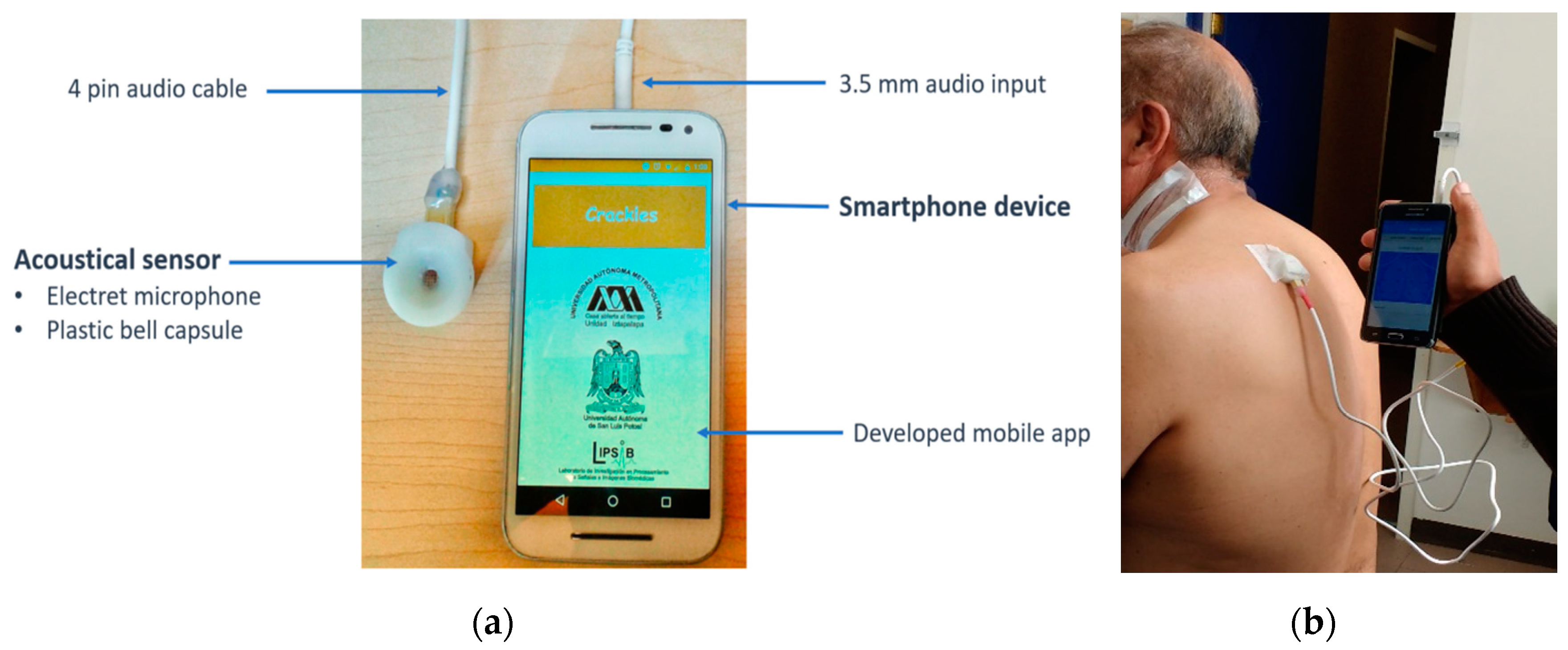 Sensors | Free Full-Text | A Smartphone-Based System for Automated
