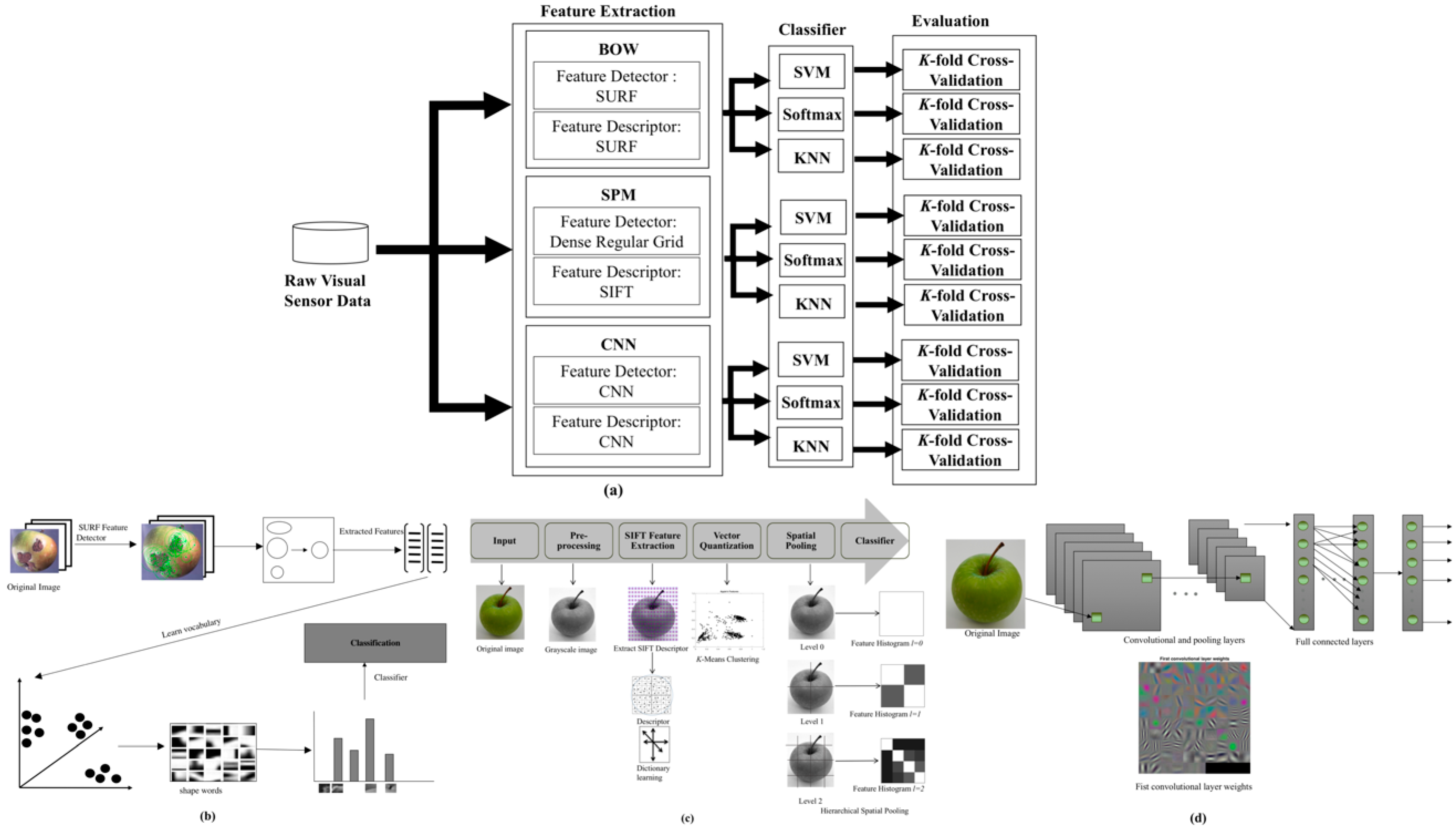 Sensors | Free Full-Text | Vision-Based Apple Classification for
