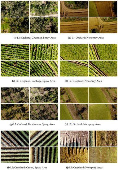 Sensors   Special Issue : Unmanned Aerial Vehicle Networks, Systems
