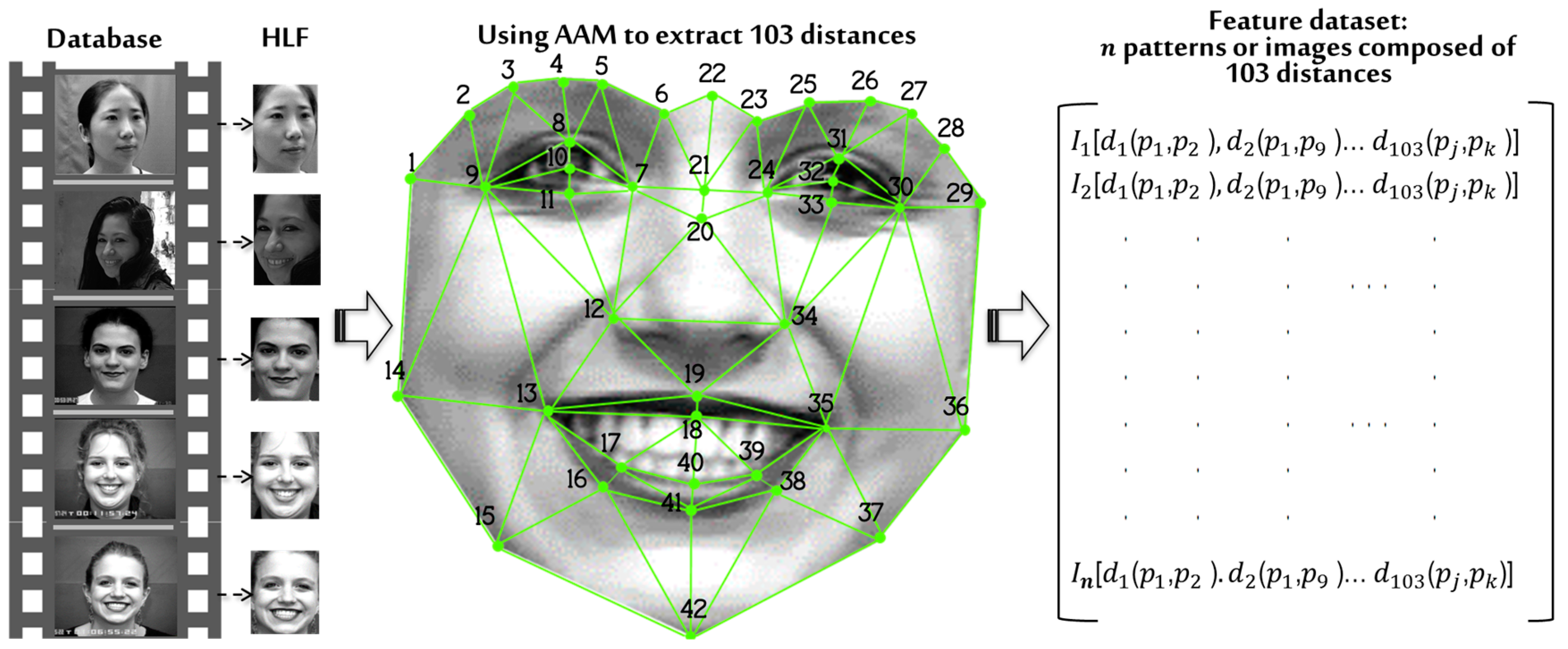 Sensors | Free Full-Text | System for Face Recognition under