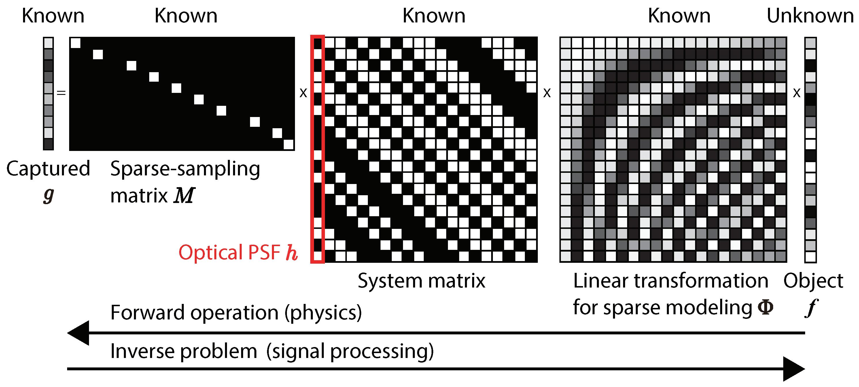 Sensors   Free Full-Text   Super Field-of-View Lensless