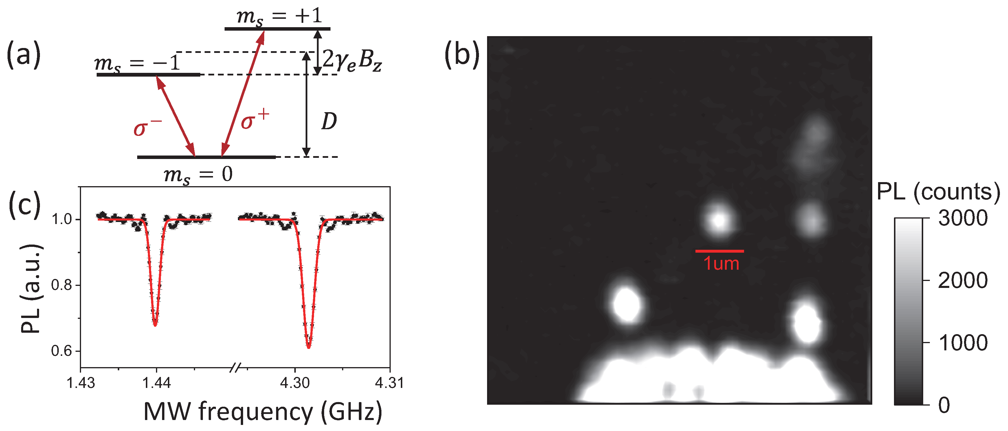 The polarization efficiency for the right-handed circular