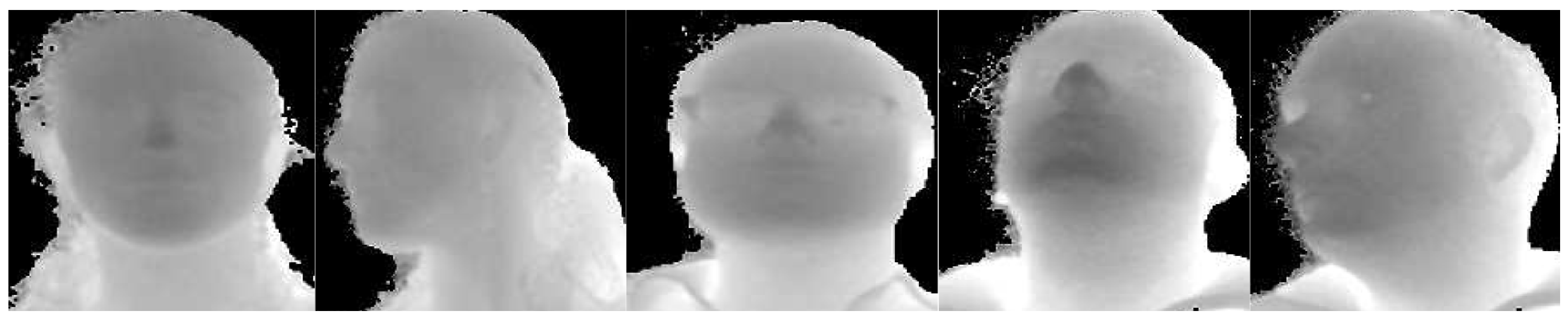 Sensors | Free Full-Text | Driver Face Verification with