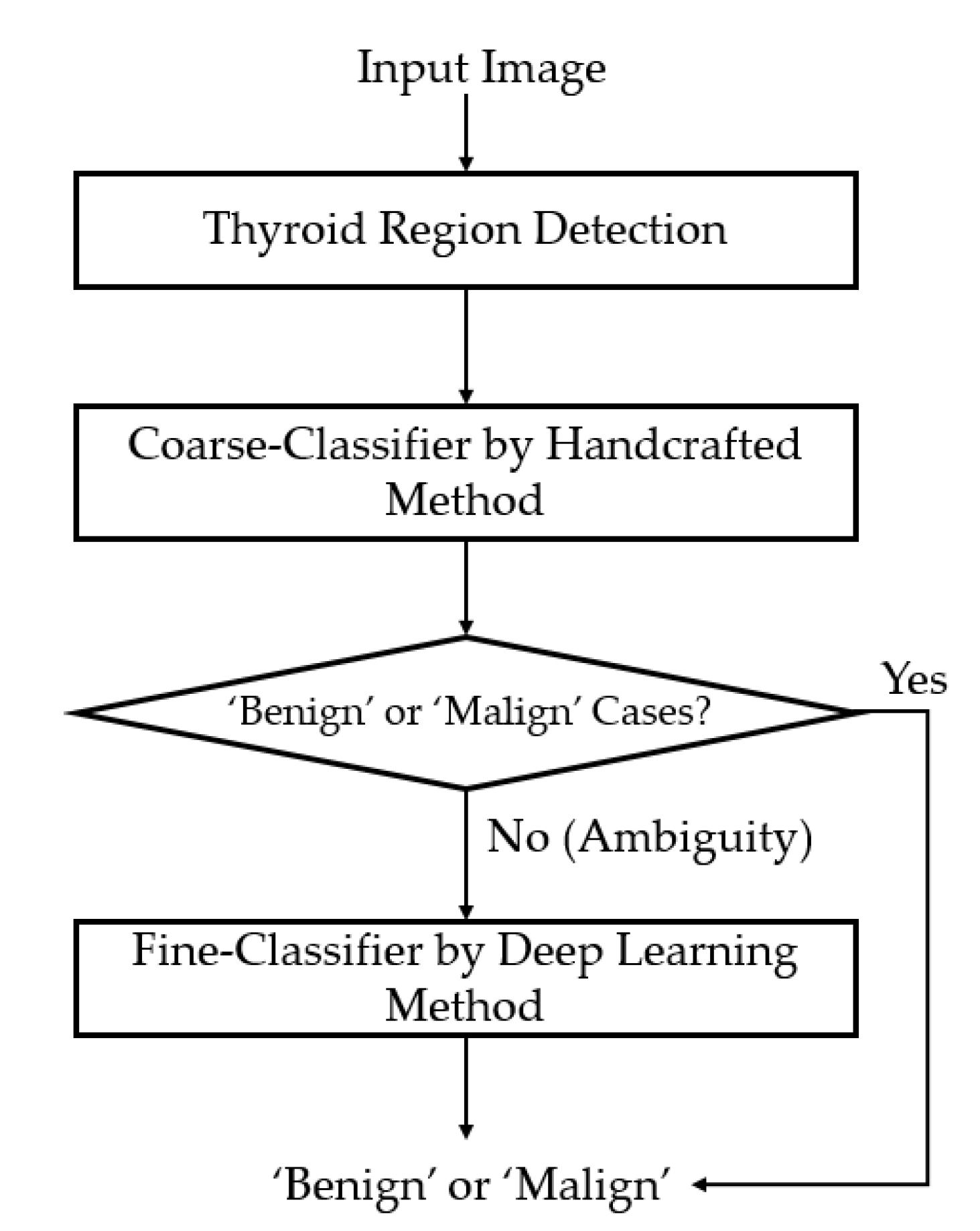 Sensors Free Full Text Ultrasound Image Based Diagnosis Of