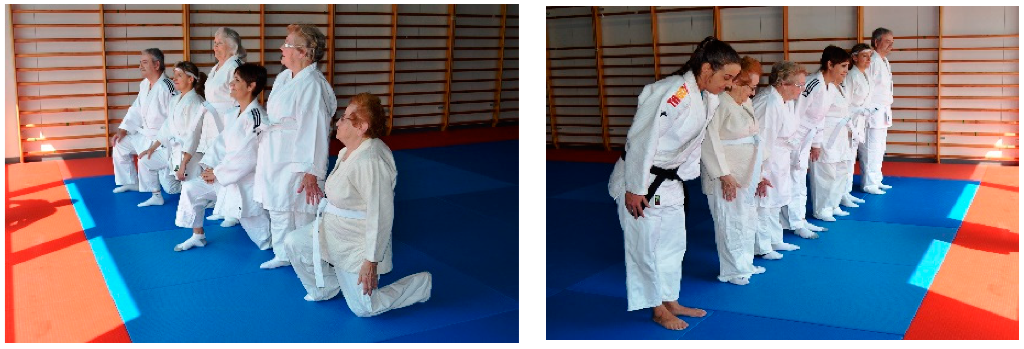 Societies   Free Full-Text   Adapted Utilitarian Judo: The