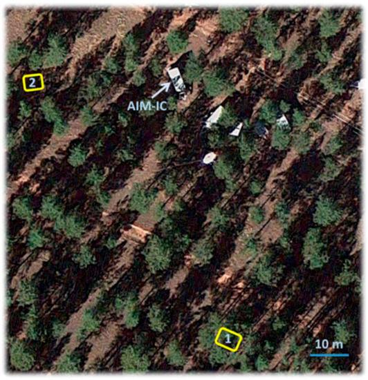 Cecilie forest alexander range