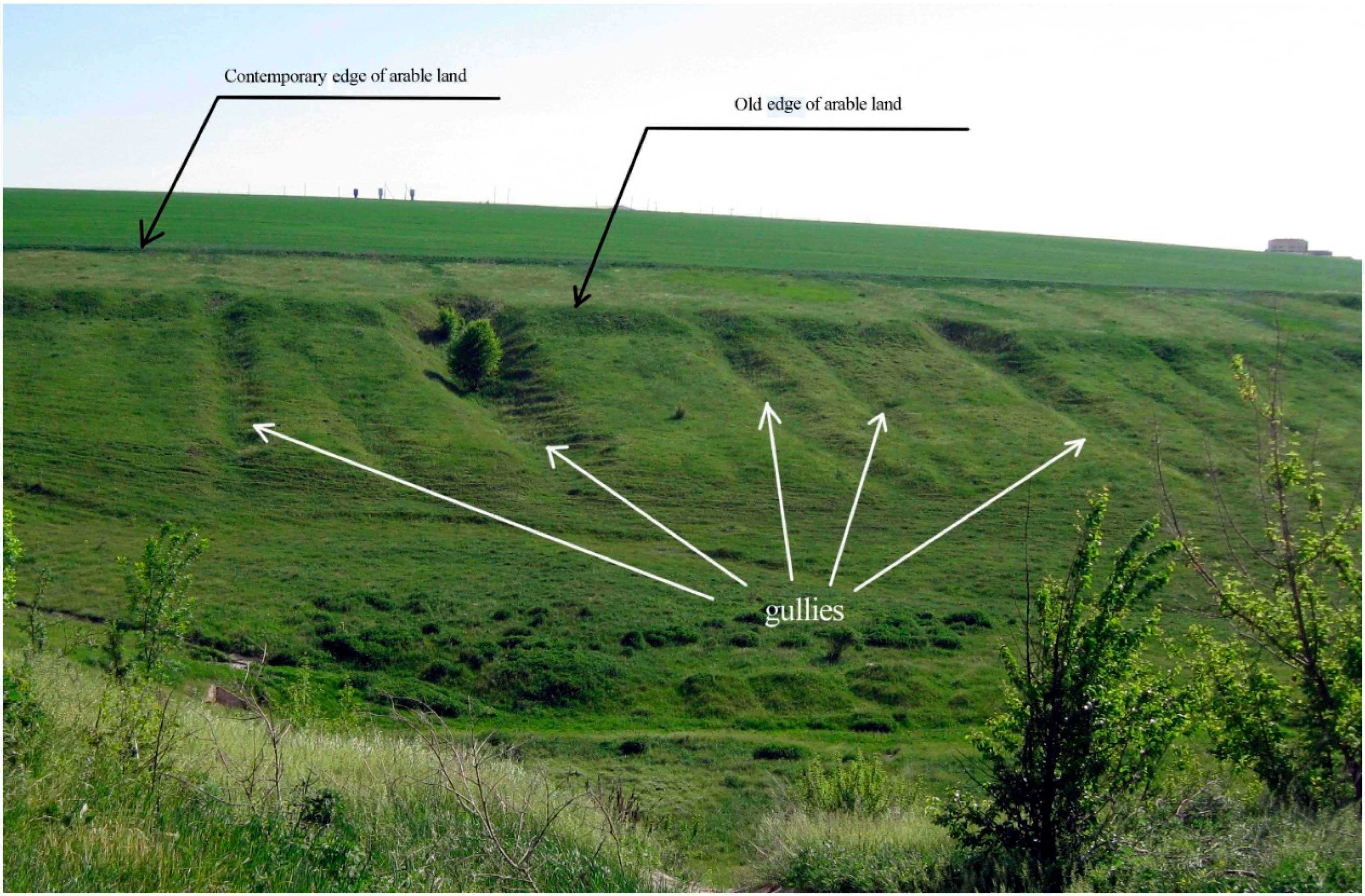 The main soil of the steppes. Chernozem and its main properties 93