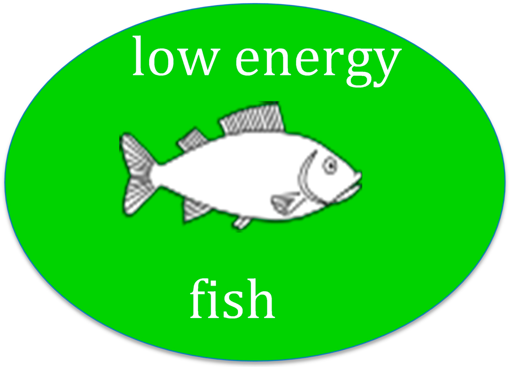 Sustainability free full text first catch your fish for Fish on energy