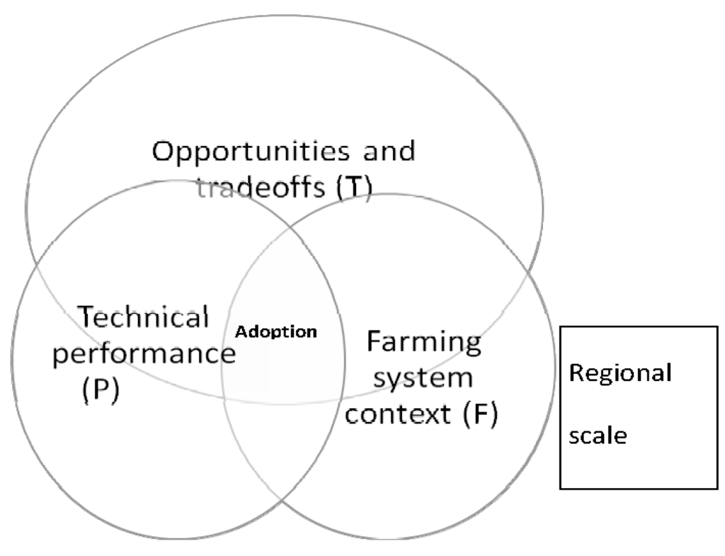 sustainability full text soil conservation issues in scifeed