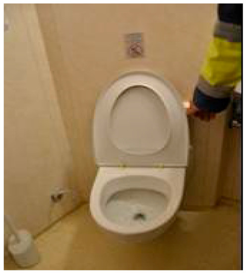Sustainability | Free Full-Text | Evolution of Toilets Worldwide ...