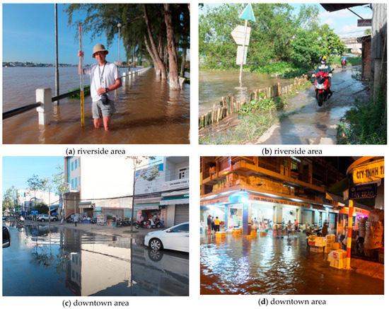 Wastewater Treatment by Aquatic Plant: Sa Dec city - Mekong Delta - Viet Nam