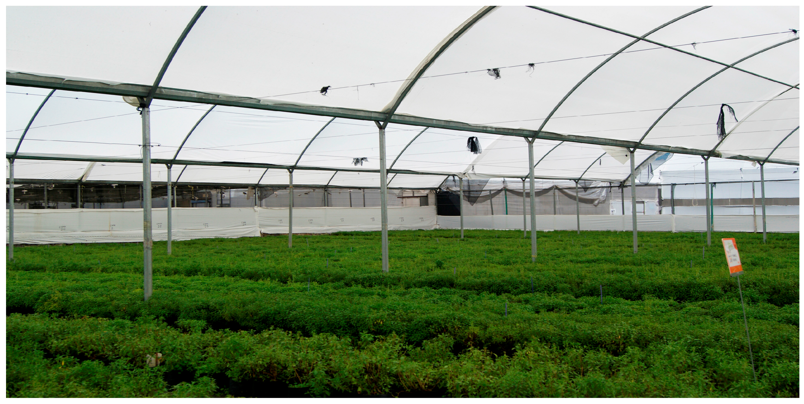 Sustainability Free Full Text Potential Of Vertical Hydroponic Agriculture In Mexico Html