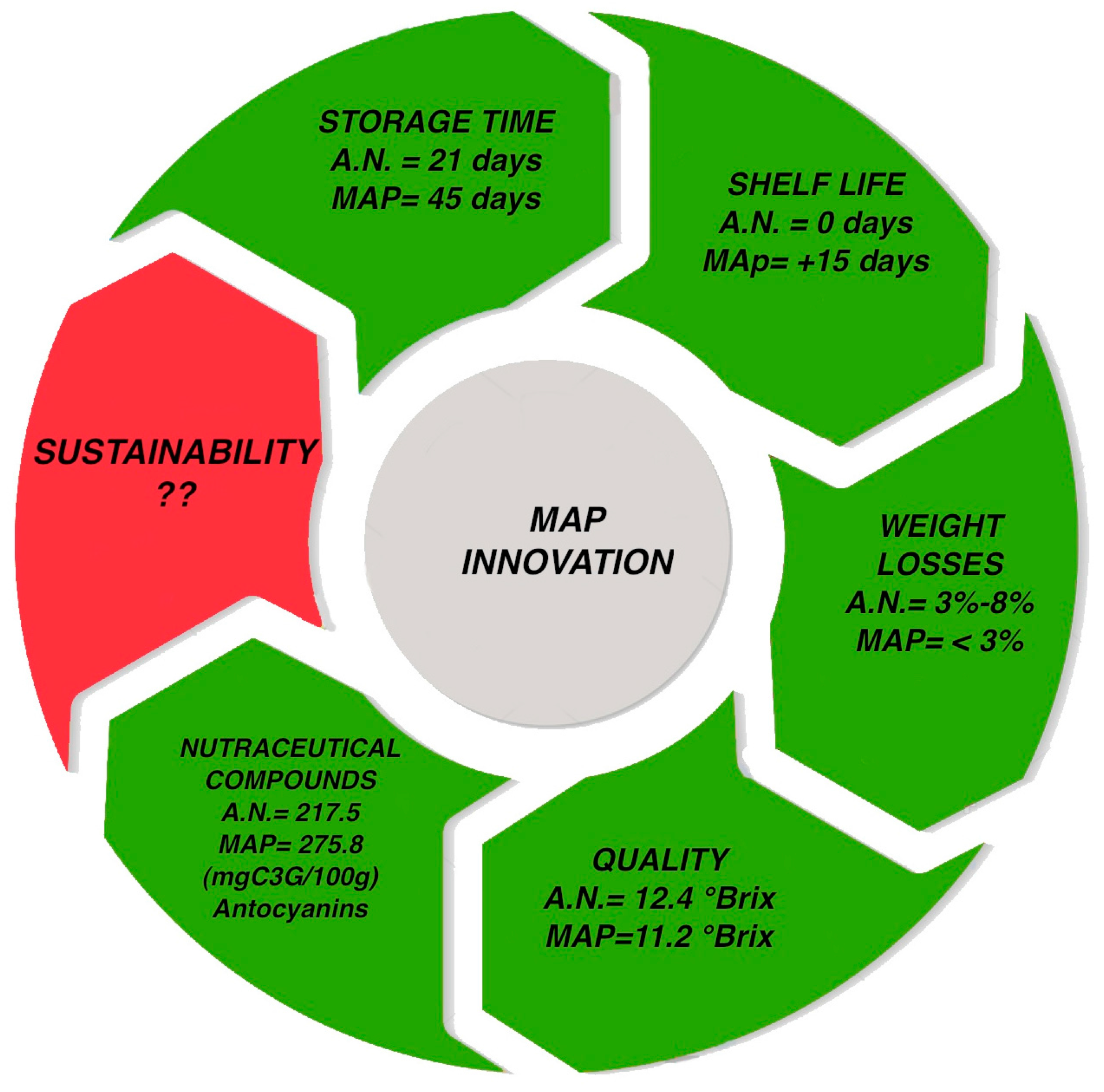 sustainability free full text blueberry supply chain in italy