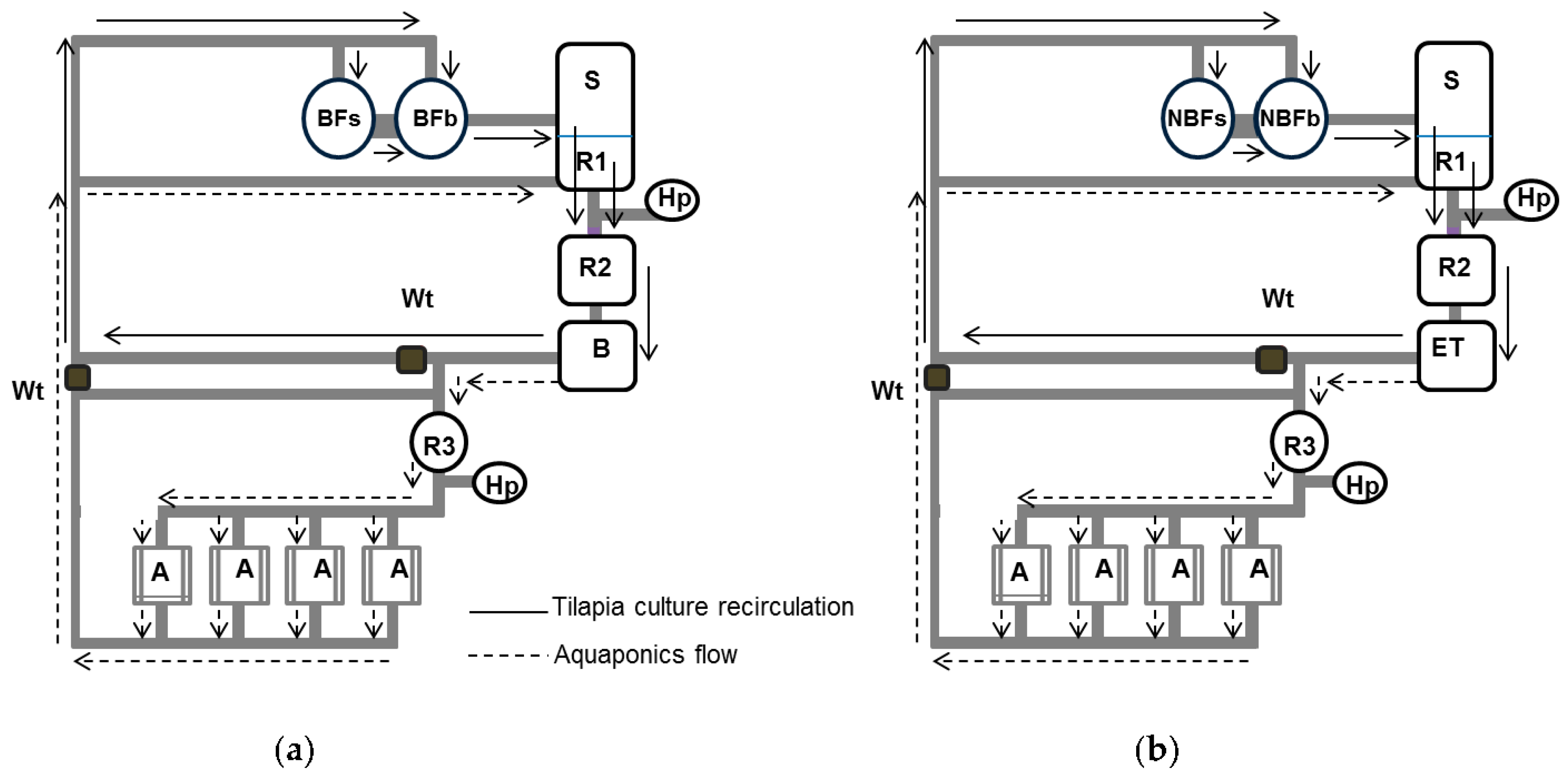 a critical evaluation of aquaponics Aquaponics is an environmentally  recirculating aquaculture tank production systems an overview of critical  evaluation and development of aquaponics production.