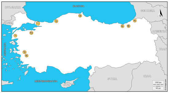 looking for a friend close in zonguldak