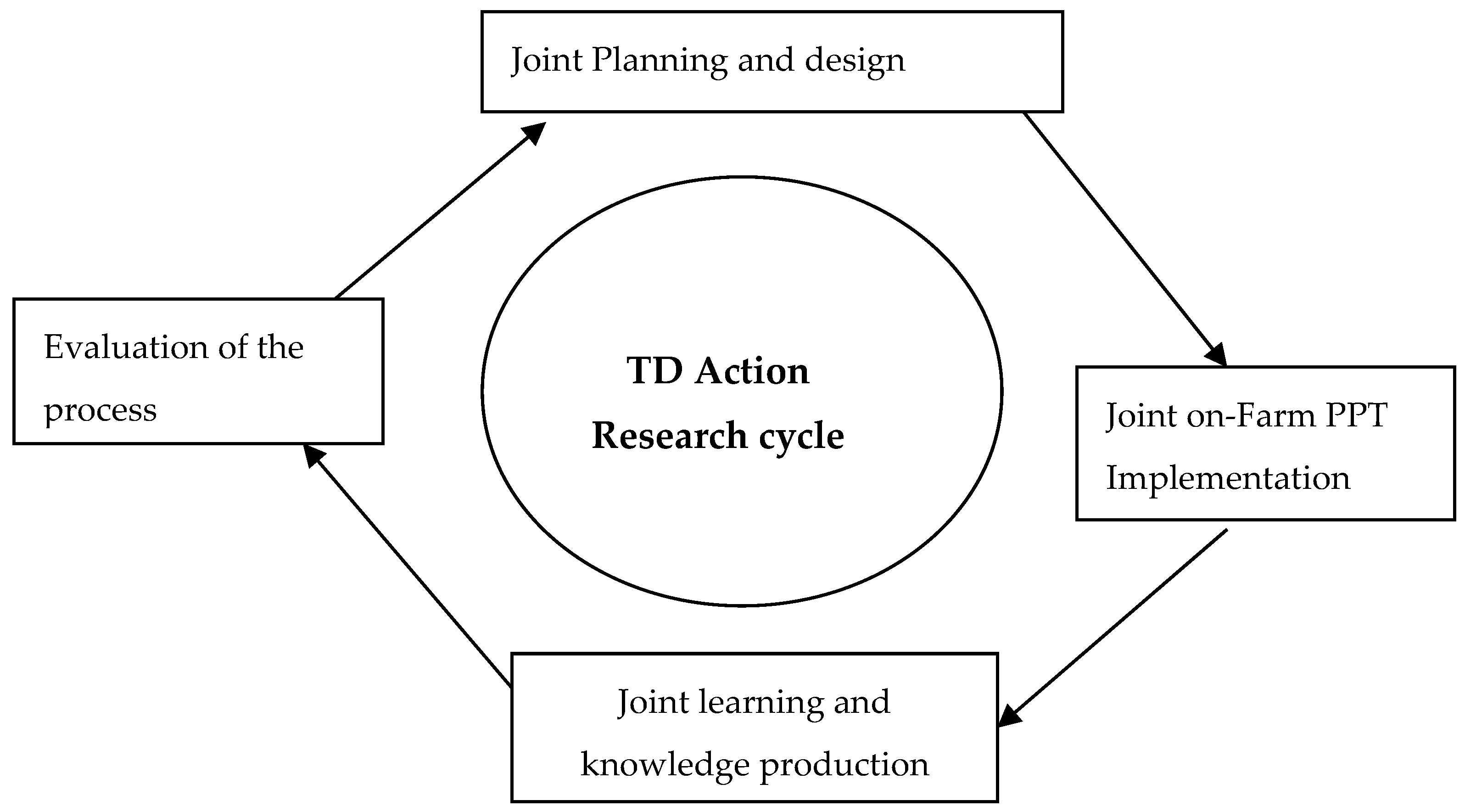 Sustainability | Free Full-Text | Transdisciplinary Research