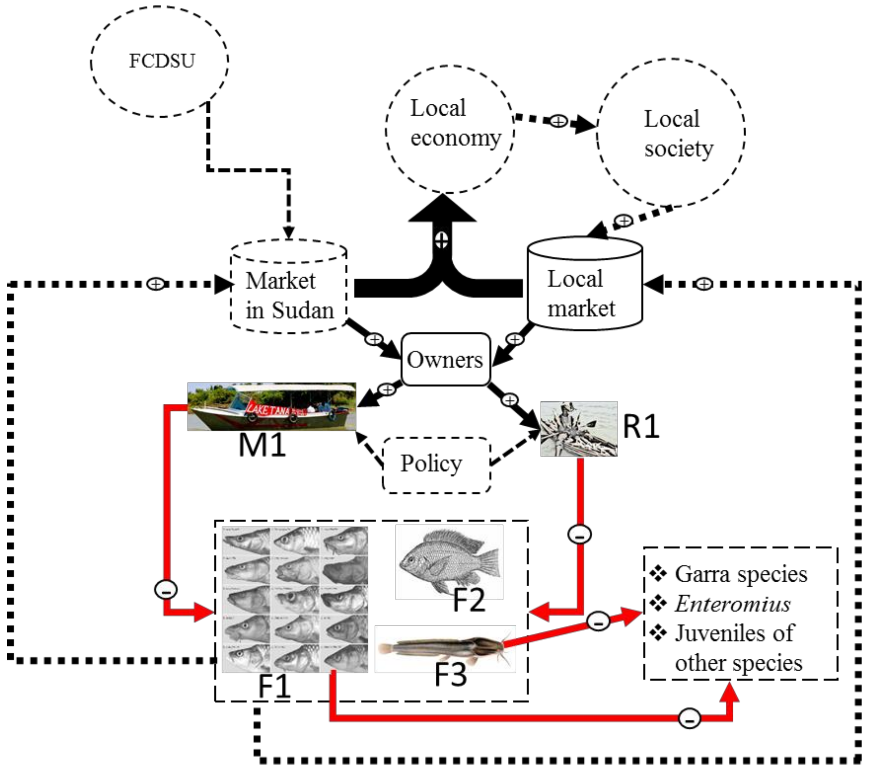 Sustainability | Free Full-Text | A Drivers-Pressure-State