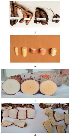 functional properties of flour pdf