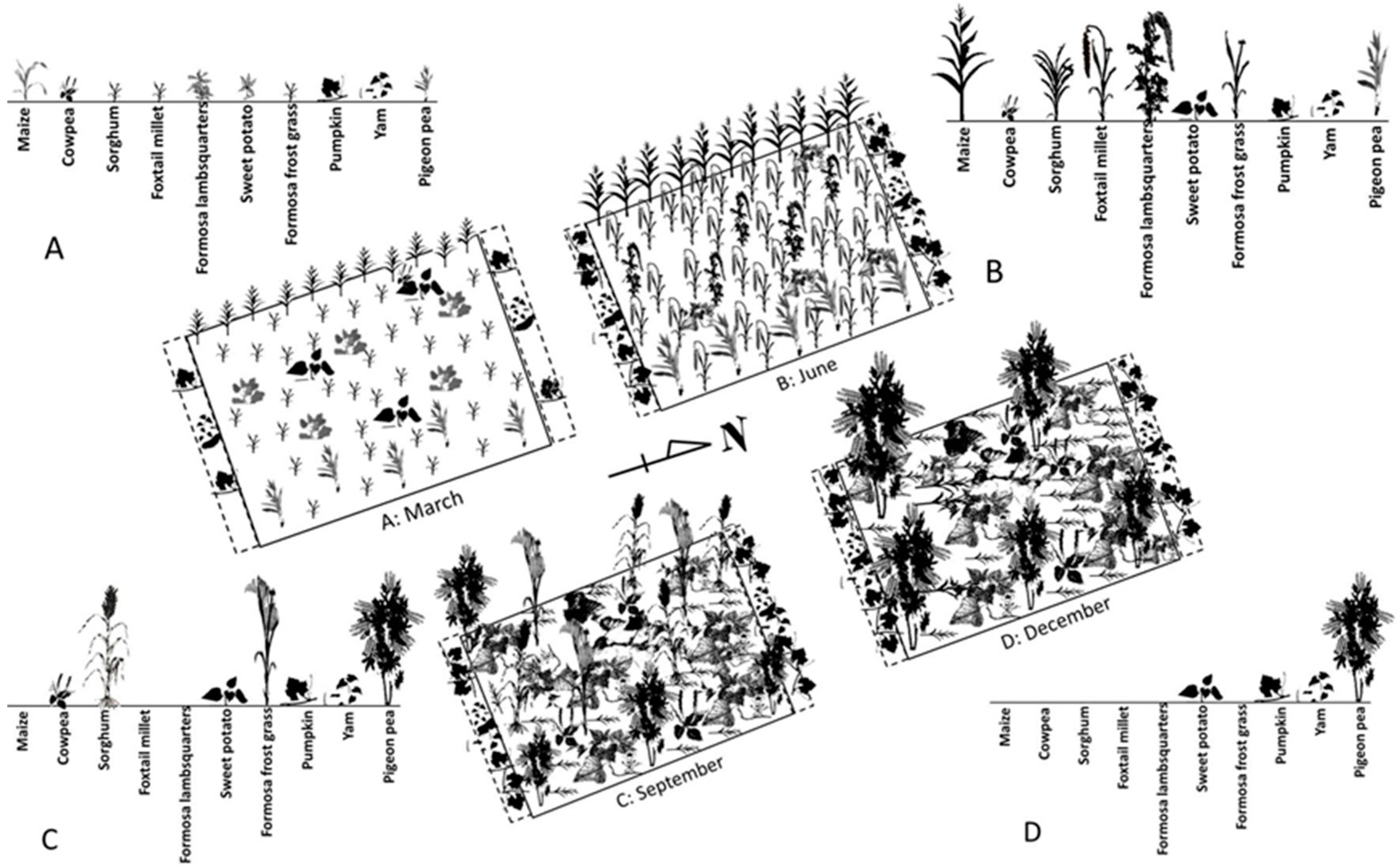Sustainability | Free Full-Text | Traditional Farming and