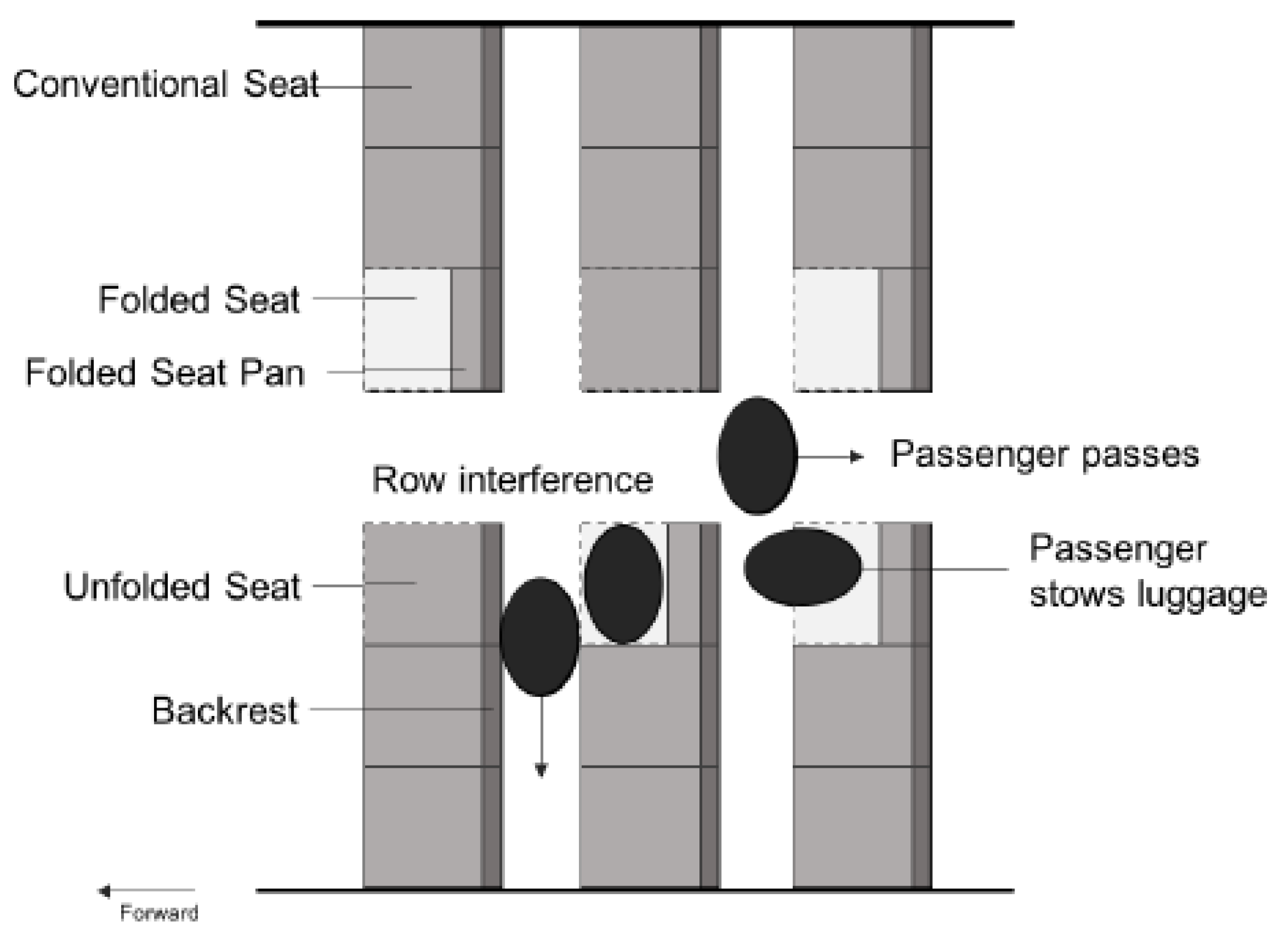 Animal Cell Model Furthermore Airplane Seat Diagram As Well Aircraft