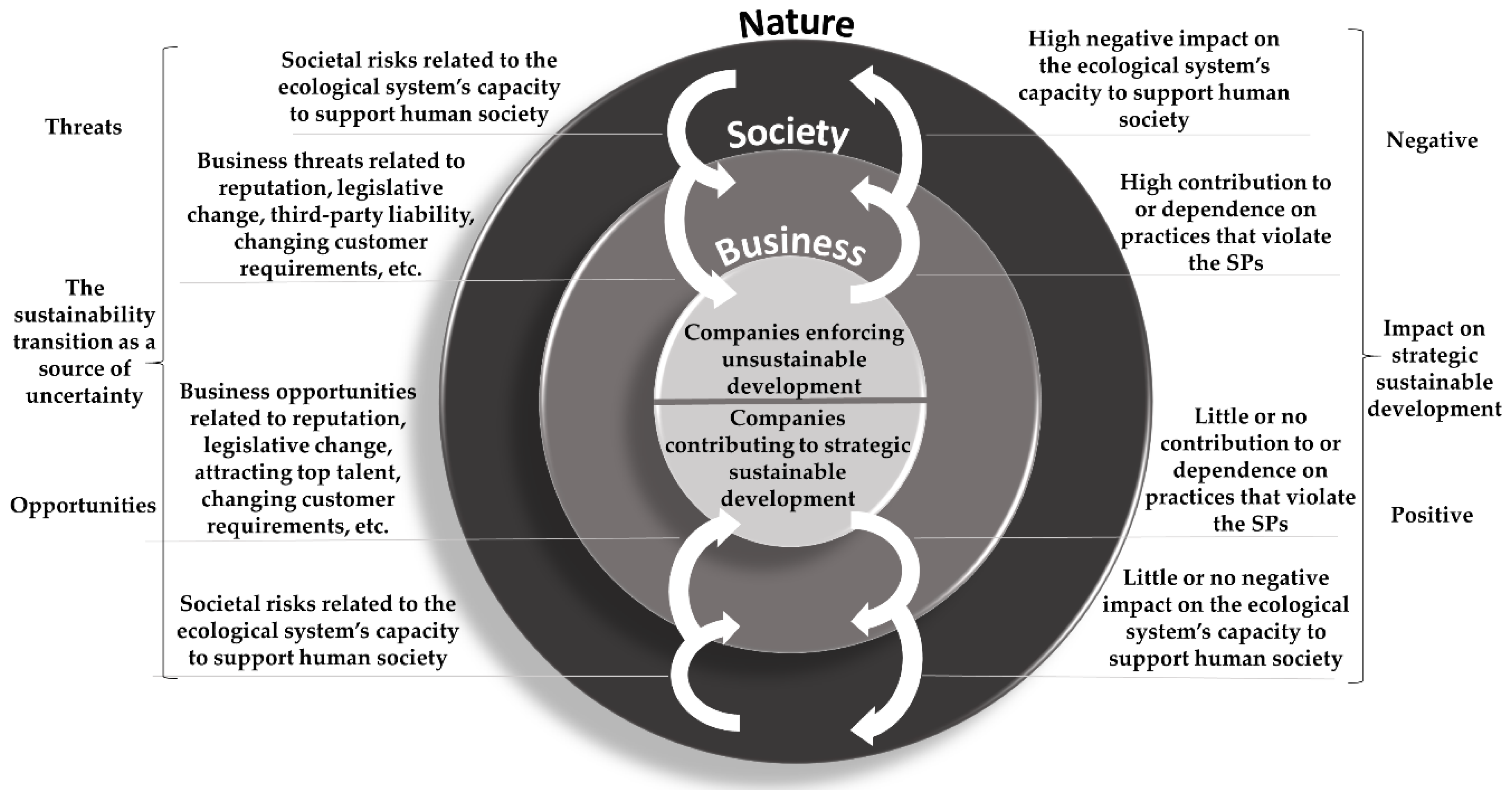 Sustainability | Free Full-Text | Company Risk Management in Light