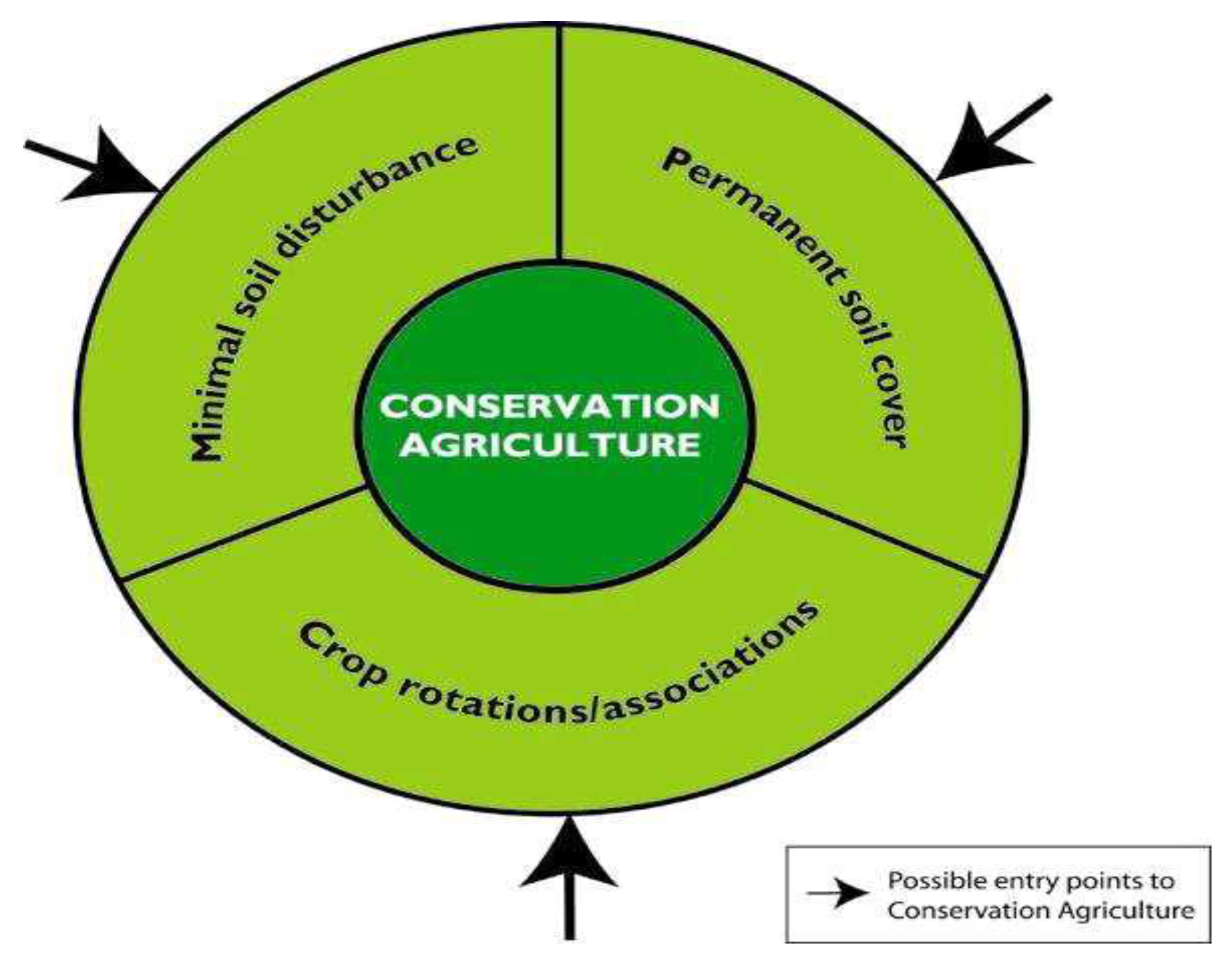 Sustainability Free Full Text Social Capital And Adoption Of Alternative Conservation Agricultural Practices In South Western Nigeria Html