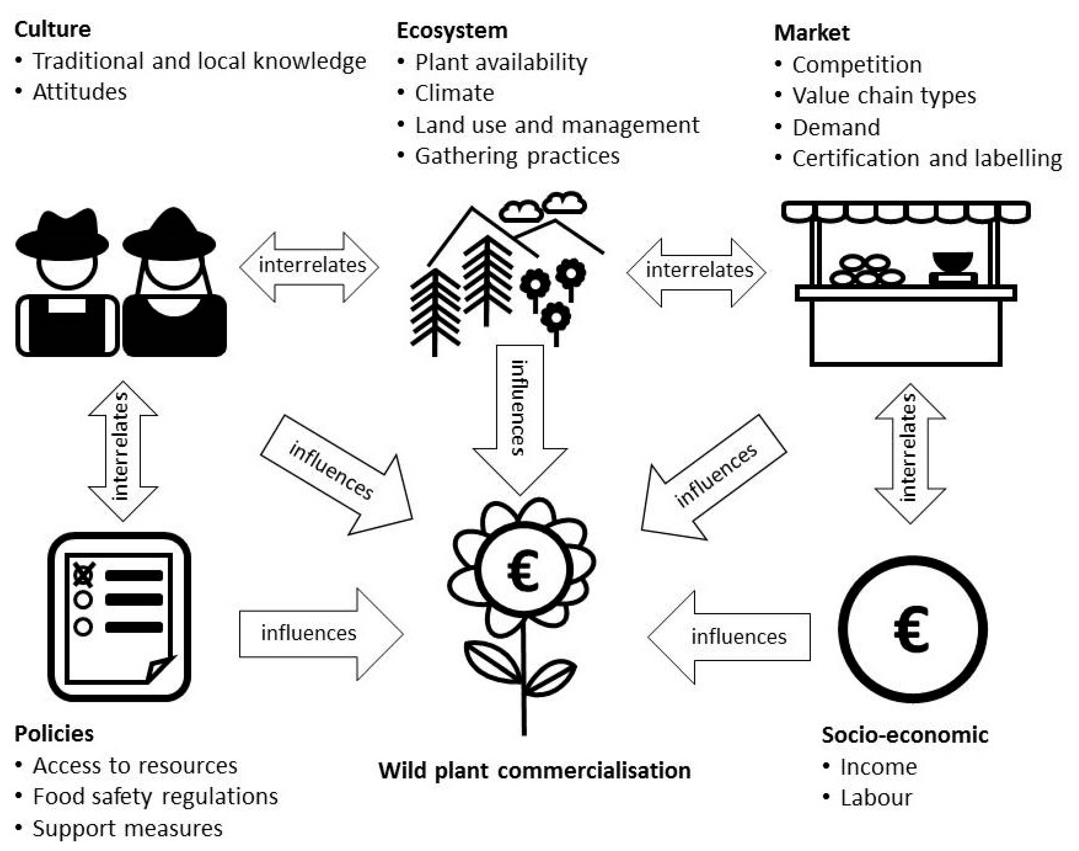 Sustainability | Free Full-Text | Conceptualising the