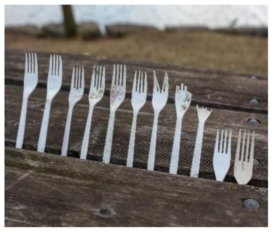 Domestic as FU/&* hand burned wood serving fork