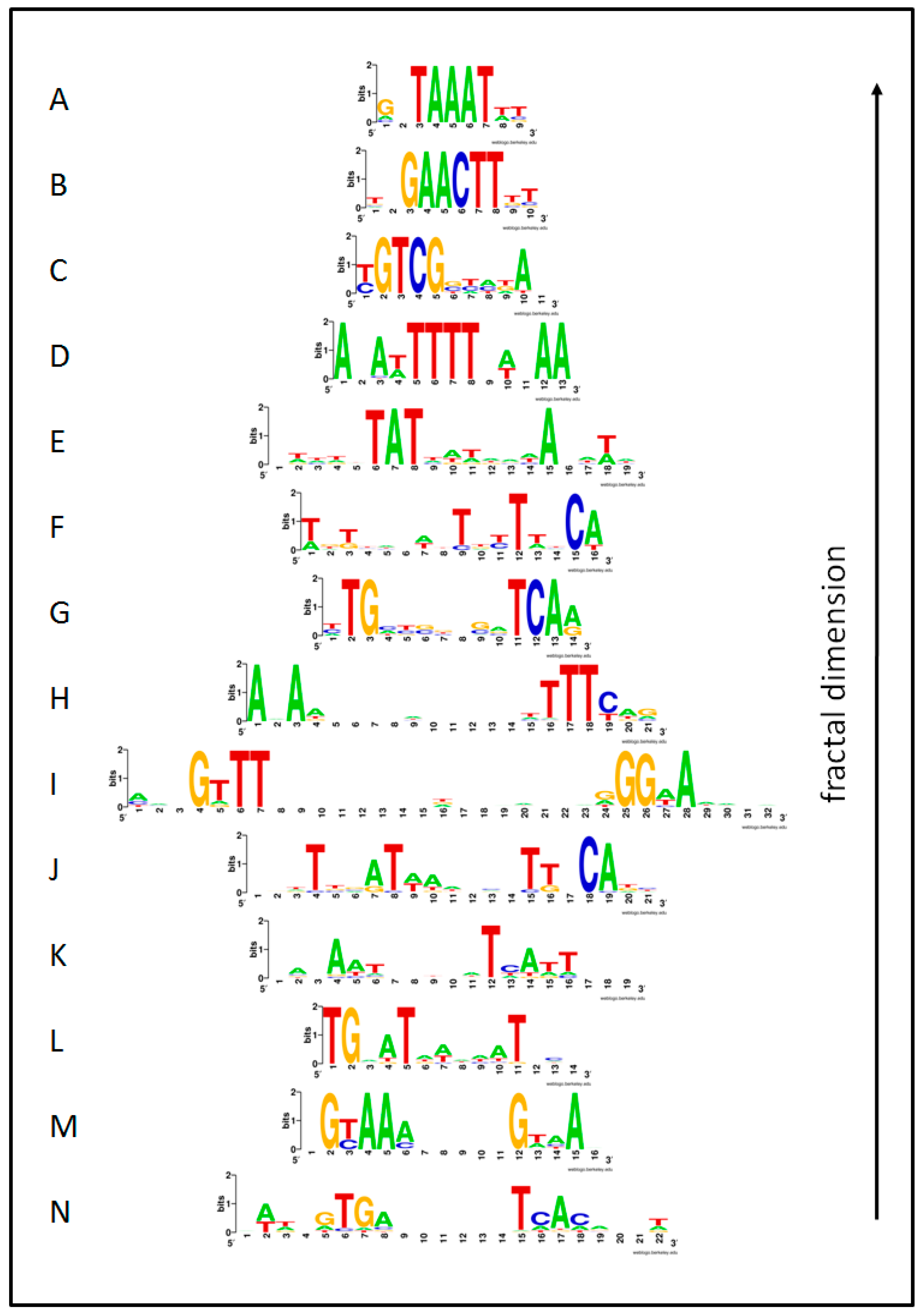 Symmetry | Free Full-Text | Symmetry in the Language of Gene