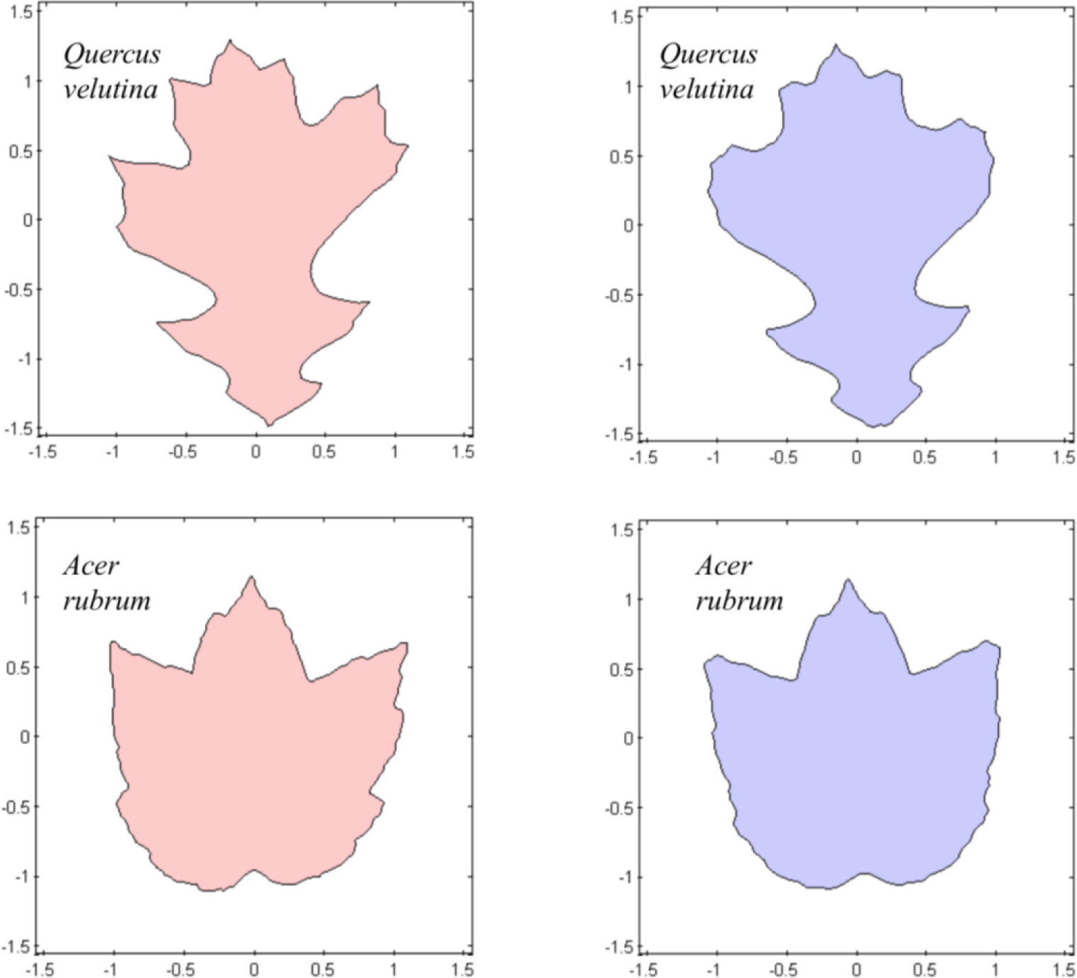 download heavy-tailed distributions and robustness