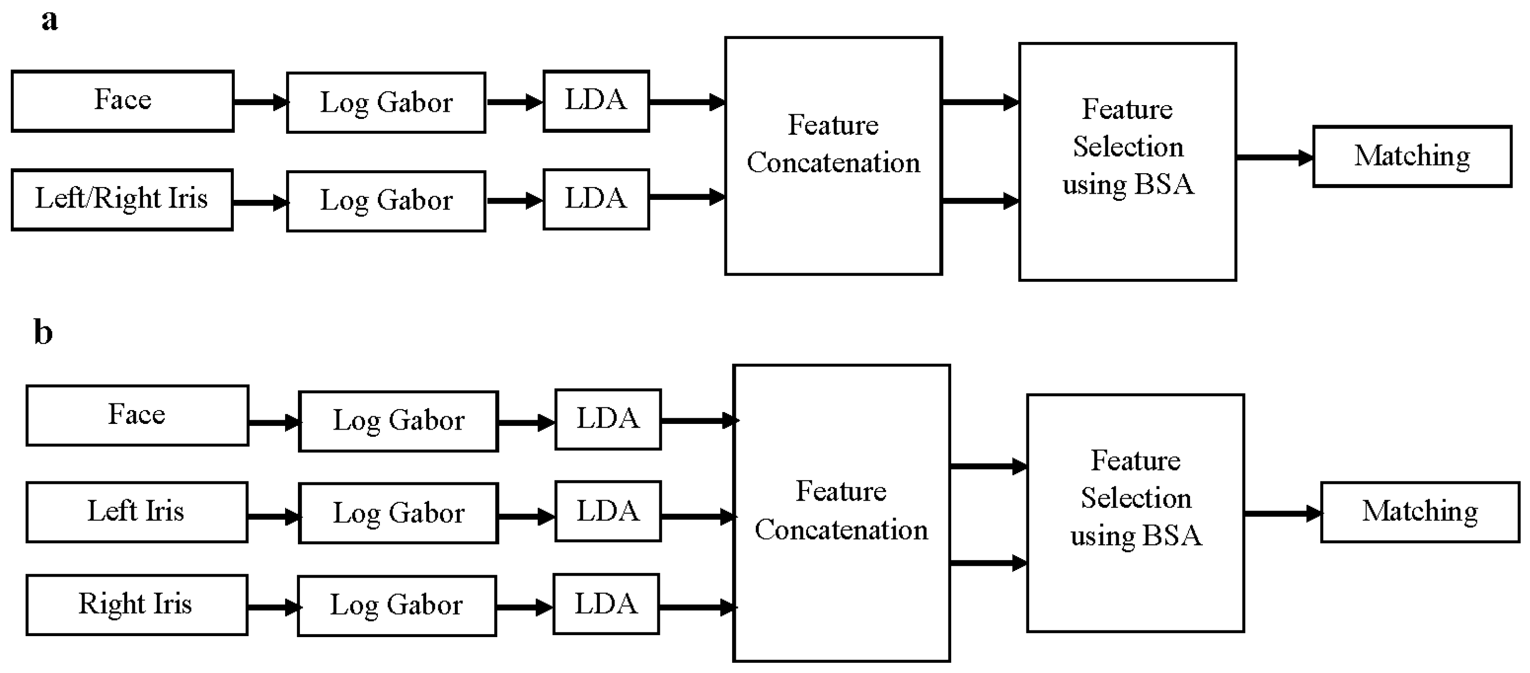 multimodal biometric thesis Multimodal biometric fusion: a study on vulnerabilities to indirect attacks et al: evaluation of biometric spoofing in a multimodal system in.