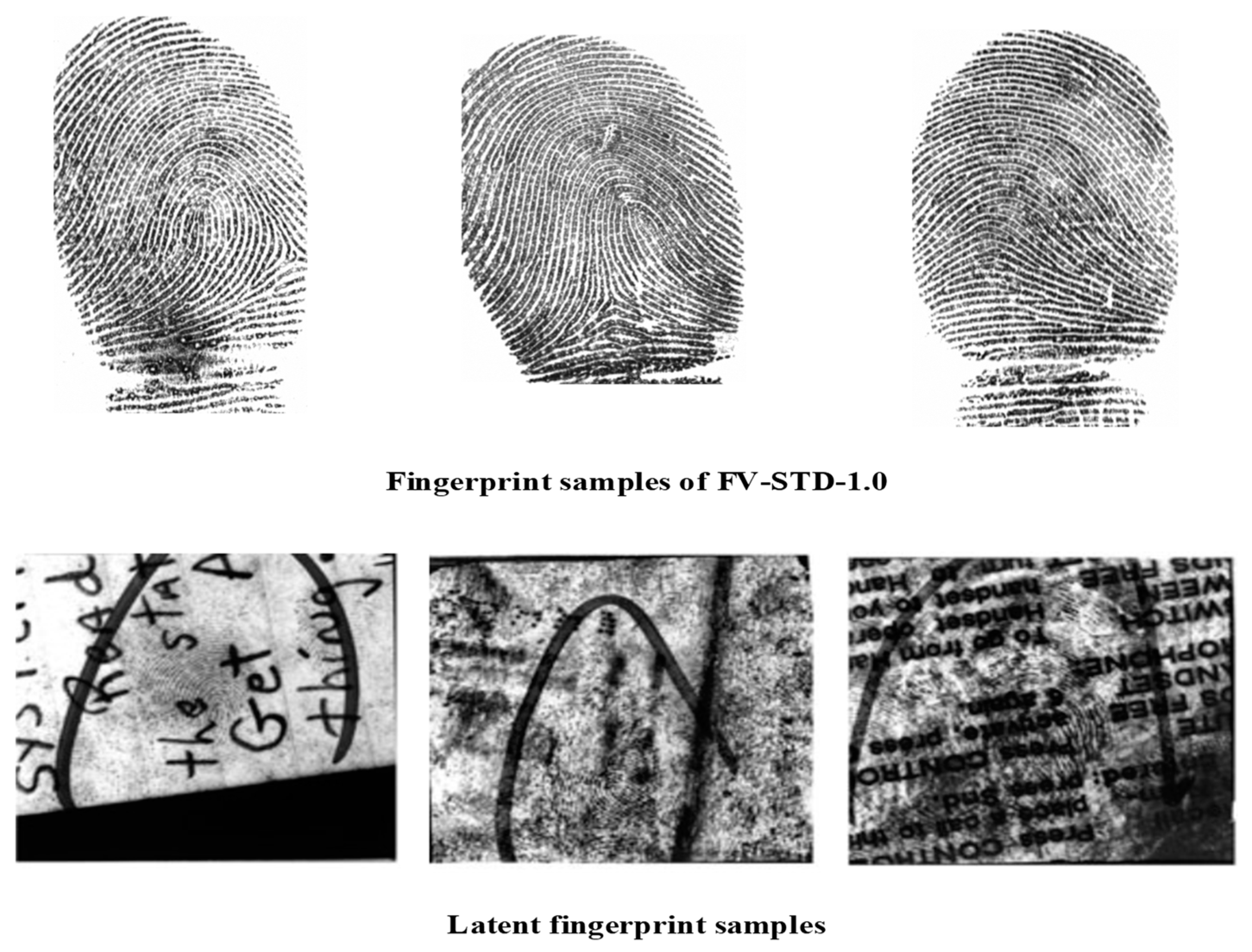 Symmetry   Free Full-Text   Security and Accuracy of Fingerprint